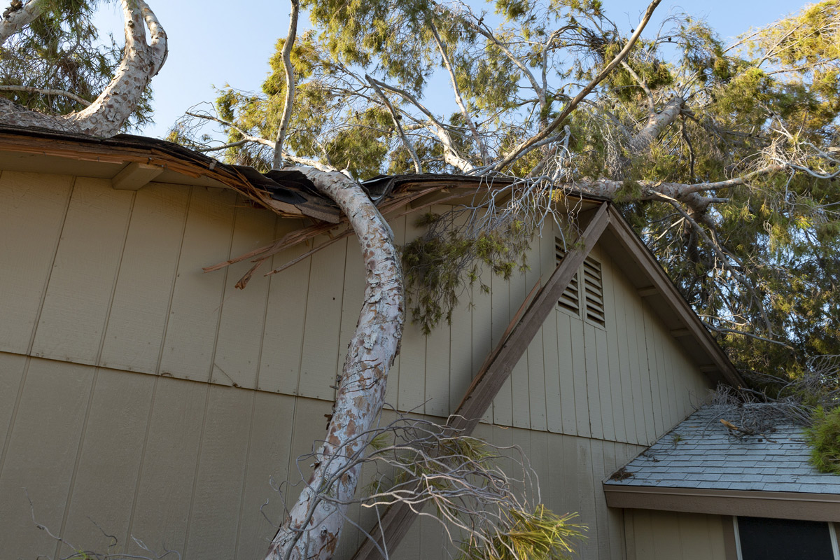 Proactively Protecting Your Home Against Storm Damage