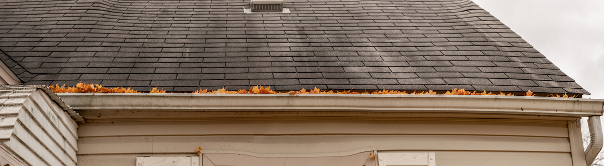 7 New Year's Resolutions For Your Roof